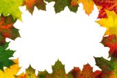 Autumn backdrop - frame composed of colorful autumn leaves over white  — Stockfoto