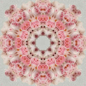 Concentric Flower Center Macro Close-up. Mandala Kaleidoscopic d — Stockfoto