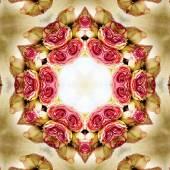 Concentric Flower Center Macro Close-up. Mandala Kaleidoscopic d — Stock Photo