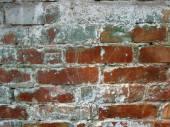 Vieux mur de briques dans une image de fond — Photo