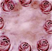 Paper background with roses — Stock Photo