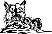 Big cat puma — Vettoriale Stock