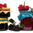 Jars of jam and berries isolated on white background. — Stock Photo #58381309