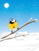 Blue tit sitting on a snowy branch tree — Stock Vector