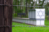 Jewish graves in Stutthof concentration camp — Stock Photo