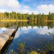 Autumn lake and wooden bridge — Stock Photo #58345071