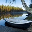 Morning lake silence in November — Stock Photo #60627129