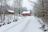 Winter road to Swedish village — Stock Photo