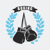 Boxing design  — Stock Vector