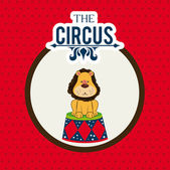 Circus design — Stock Vector