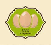 Egg design  — ストックベクタ