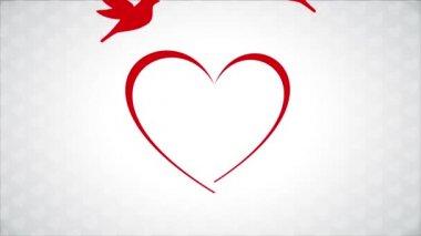 Birds in love — Stock Video