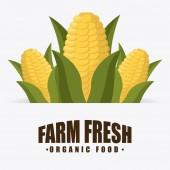 Conception de l'alimentation biologique — Vecteur