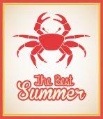 Summer design  — Stock Vector