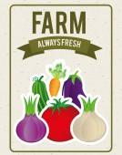 Grönsaker design — Stockvektor