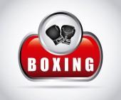 Sport boks — Wektor stockowy