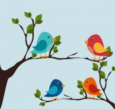 Bird design, vector illustration. — Stock Vector