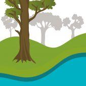 Progettazione di foreste, illustrazione vettoriale. — Vettoriale Stock
