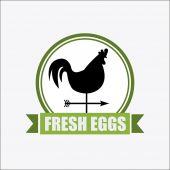 Fresh eggs design — Stock Vector