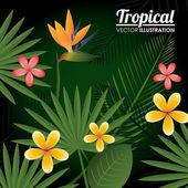 Flowers design, vector illustration. — Stock Vector