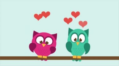 Owl couple in love Video Animation HD 1080 — ストックビデオ