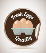 Fresh eggs — Stock Vector