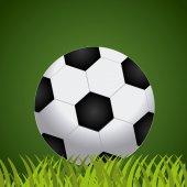 Sport design, vector illustratrion. — Stock Vector