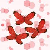 Butterflies card  — Stock Vector