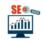 Seo icon — Stock Vector #69668335