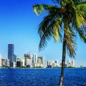 Miami Downtown skyline — Photo