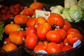 Orange pumpkins in a market — Stock Photo