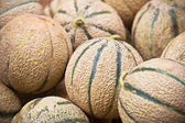 Ripe fresh melons pile in a market — Stock Photo