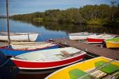 Color Wooden Boats with Paddles in a Lake — Stockfoto