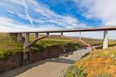 Modern bridge over Icelandic river — Stock Photo