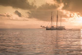 Recreational Yacht at the Indian Ocean — Stockfoto