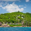 Coastline with houses in the forest — Stock Photo #68481239