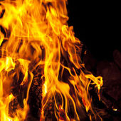 Natural fire — Stock Photo