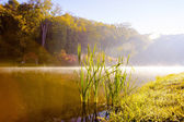 Lake in the morning — Stock Photo