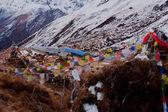 Annapurna range of the Himalayas — Stock Photo