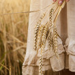 Ripe ears wheat in woman hands — Стоковое фото #55572487