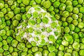 Montón de guisantes congelados — Foto de Stock