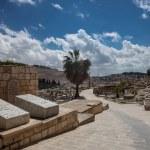 Ancient Jewish cemetery — Stock Photo #59435841
