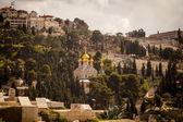 マグダラのマリア s 大聖堂観します。 — ストック写真