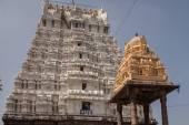 Kamakshiamman Temple in Kanchipuram. — Foto de Stock