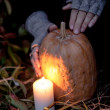 Halloween pumpkins on rocks in a forest at night — Stock Photo #70876465