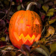 Pumpkin with lighting candle in autumn leaves — Stock Photo #70876633