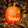 Pumpkin with lighting candle in autumn leaves — Stock Photo #70876643
