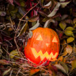 Pumpkin with lighting candle in autumn leaves — Stock Photo #70876653