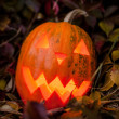 Pumpkin with lighting candle in autumn leaves — Stock Photo #70876655