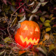 Pumpkin with lighting candle in autumn leaves — Stock Photo #70876659